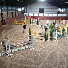 horses jumping ring