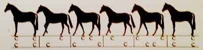 backwards horses