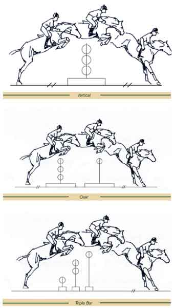 horses show jumping