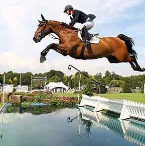 Show jumping: Jumping levels